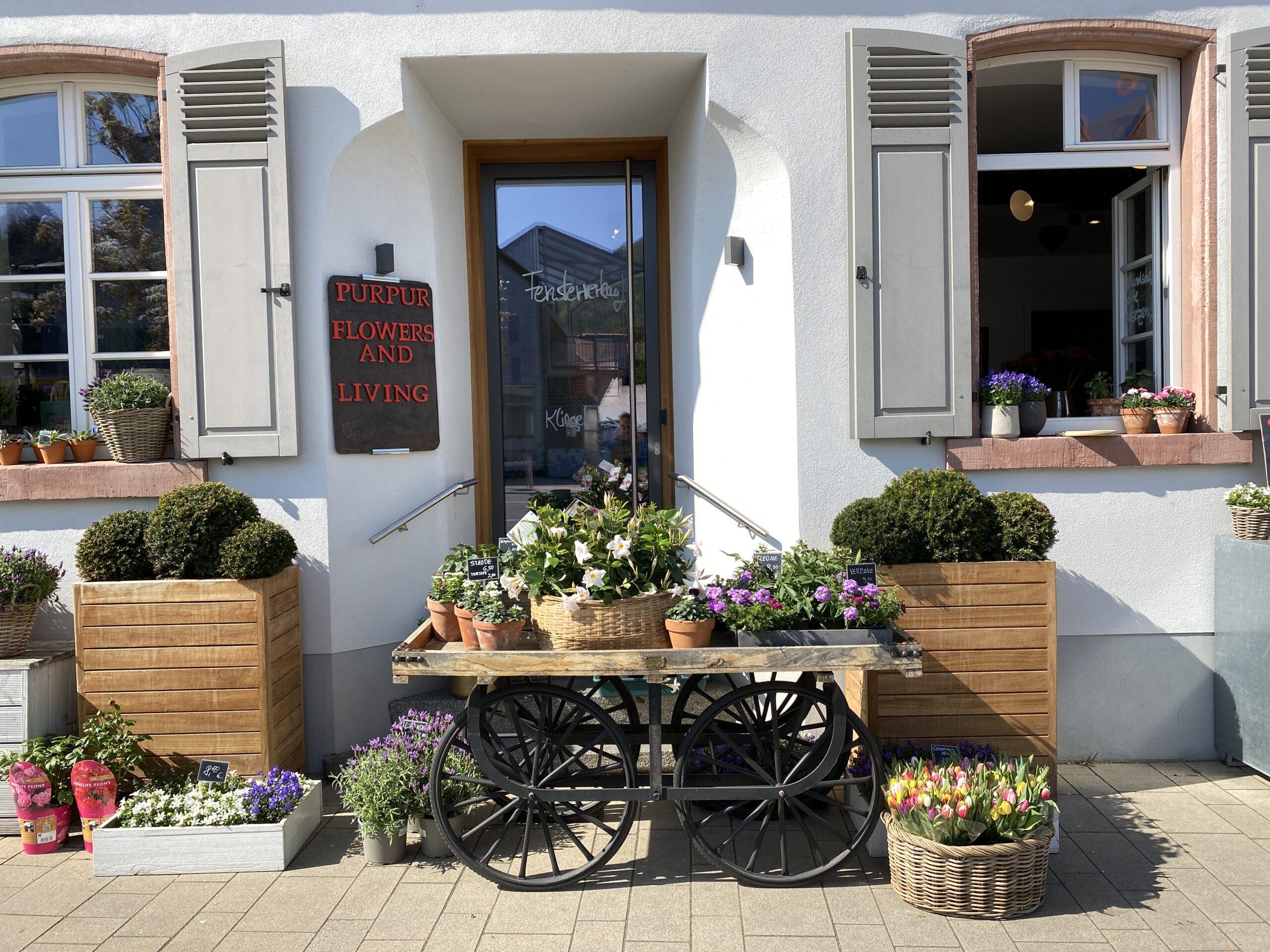 PurPur Flowers and Living in Bensheim-Auerbach