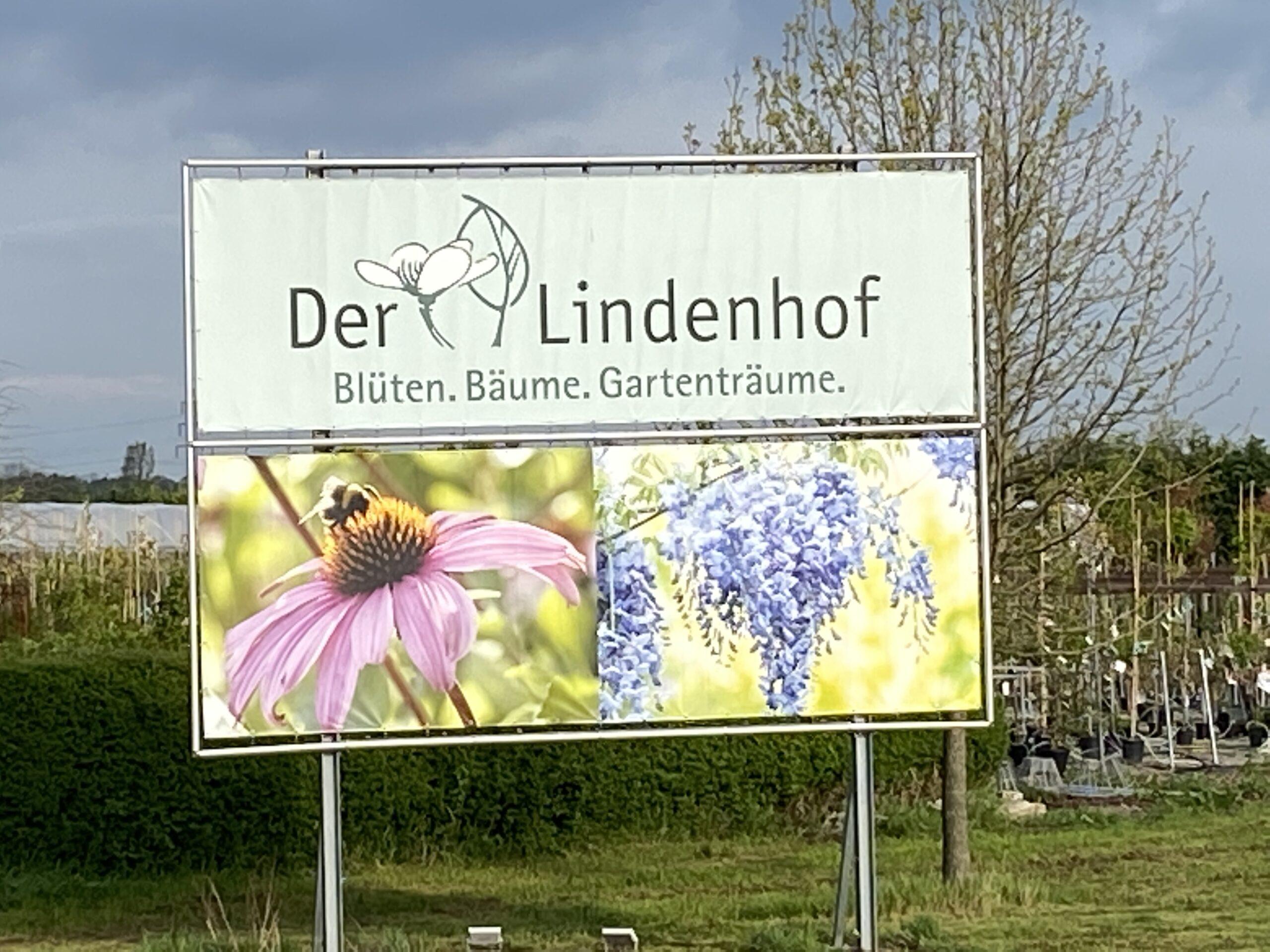 Gärtnerei Lindenhof Blumen in Bensheim-Auerbach